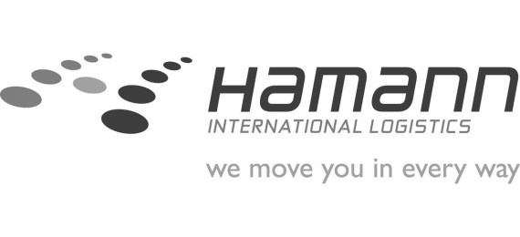 og-image-hamann-logo